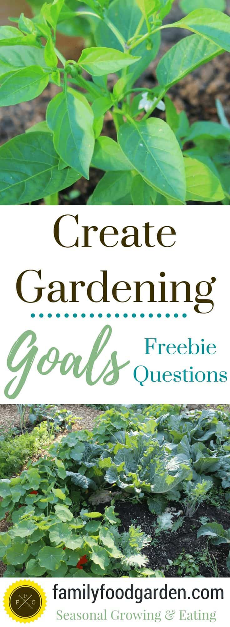 Some questions to help you create gardening goals for the year!
