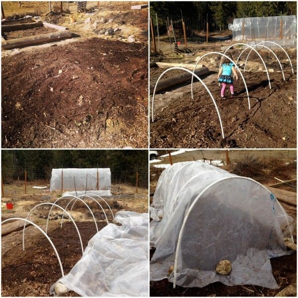Great reasons to add hoop tunnels into your garden