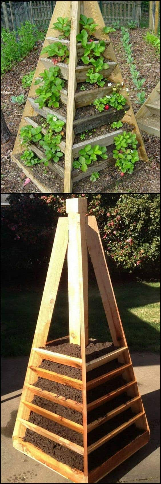 Build a strawberry tower