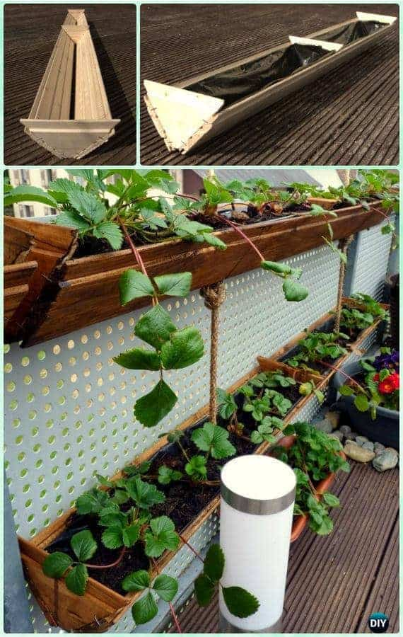 great ways to grow strawberries in containers family food