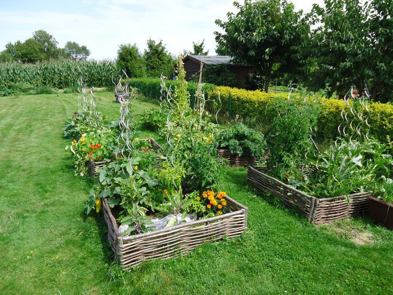 Raised Vegetable Garden Beds Ideas