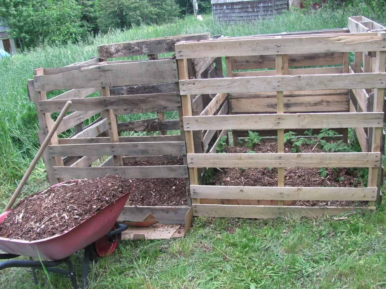 Grow Potatoes in a Pallet Container