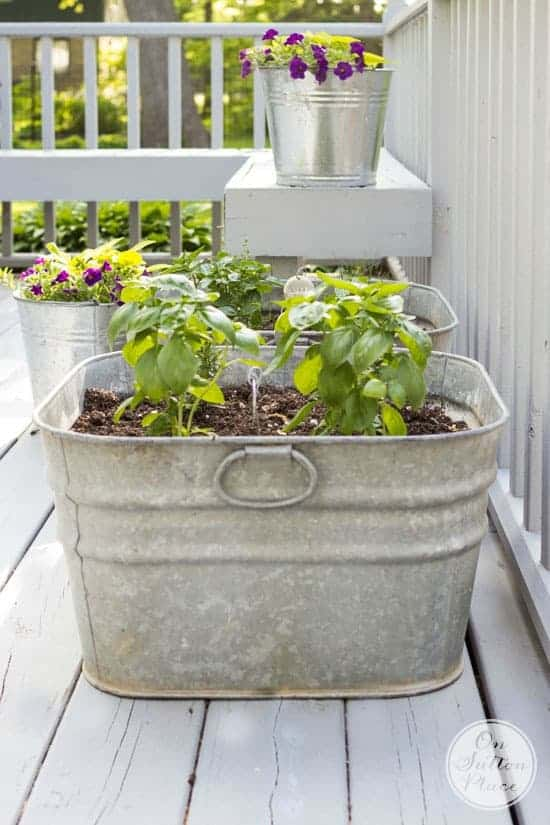 Container Herb Gardens Herb Garden Ideas Family Food