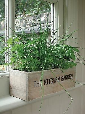 Container Herb Gardens Herb Garden Ideas Family Food Garden