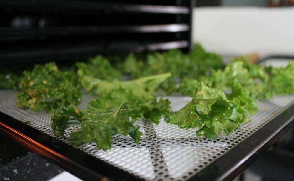 What Is The Best Inexpensive Food Dehydrator