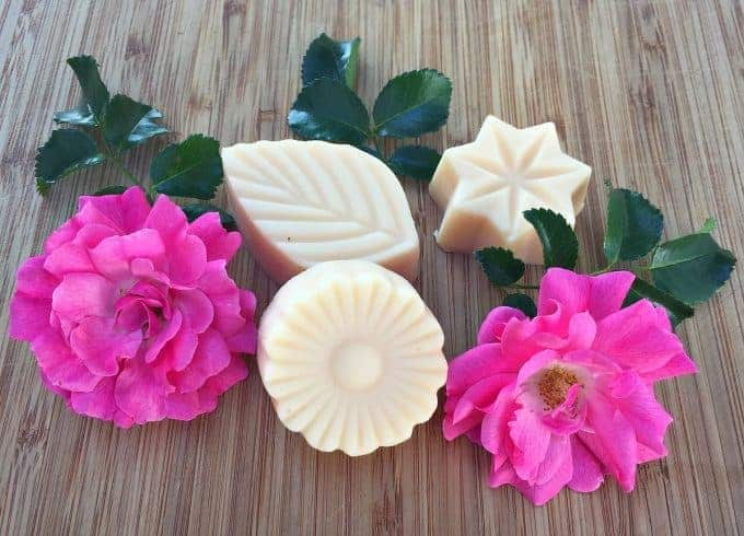 Wild rose lotion bars