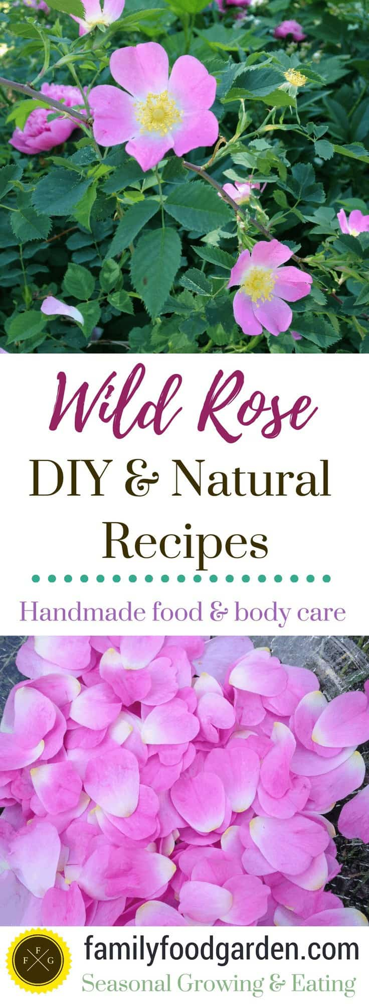 Rose petal recipes