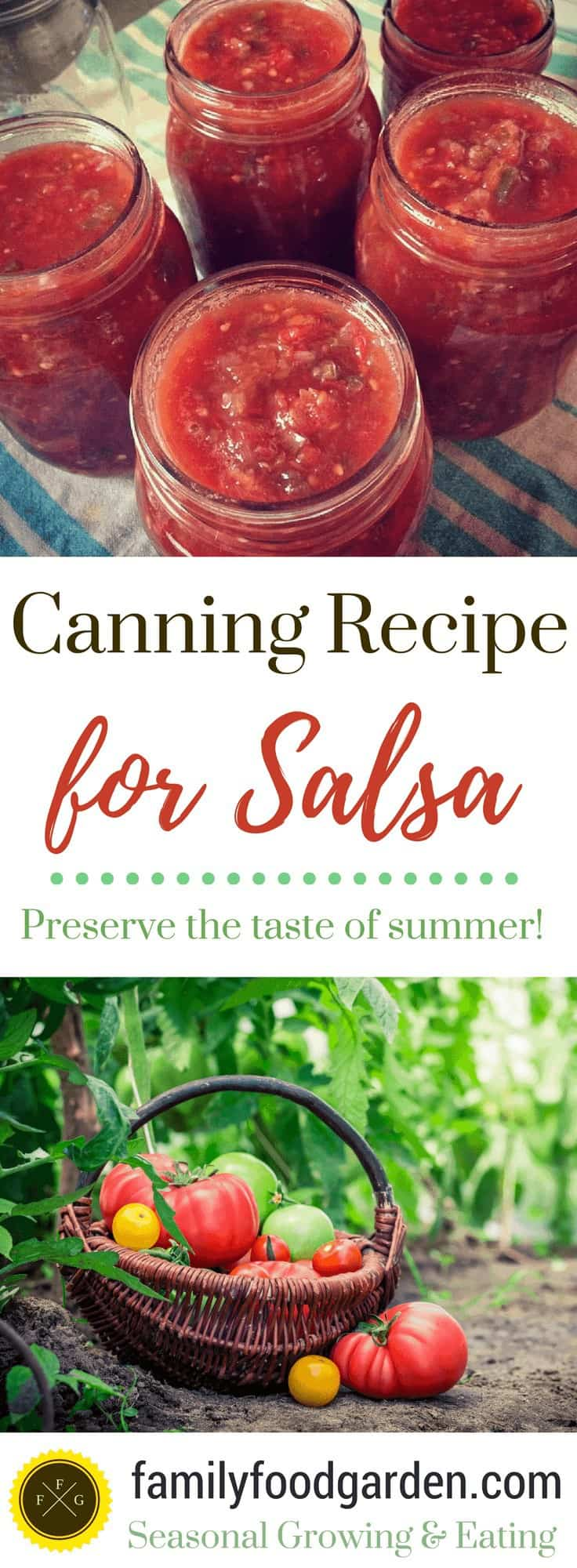 Tomato Salsa Recipe for Canning