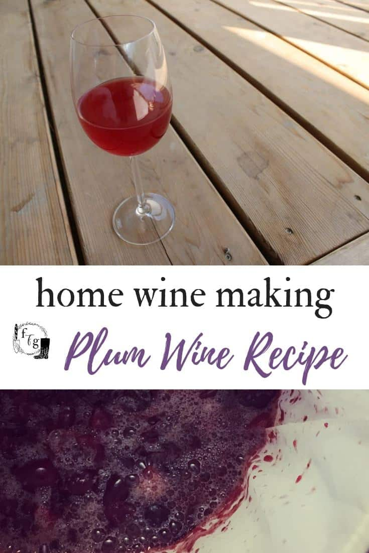 Make plum wine with Italian or yellow plums #wine #winemaking #preserve #fermentation #homebrewing