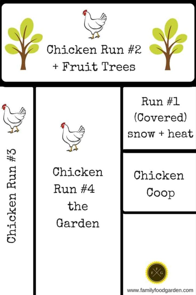 Rotational Chicken Runs and Designs around the Garden