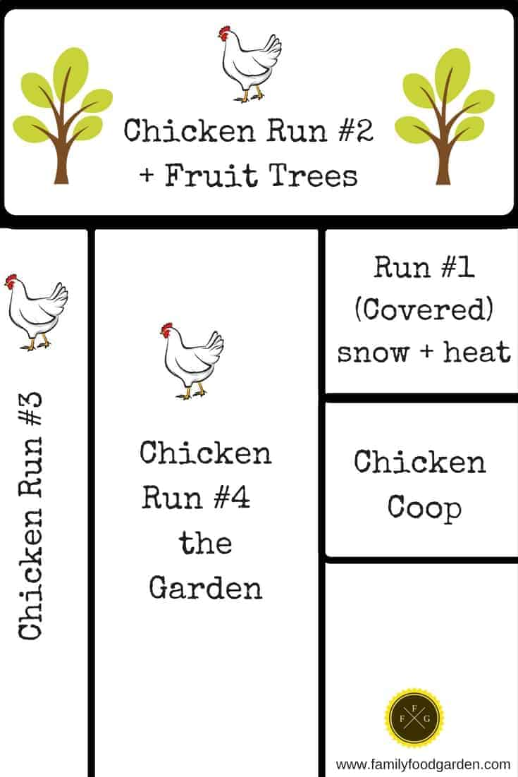 Chicken coop & rotational run design around the garden