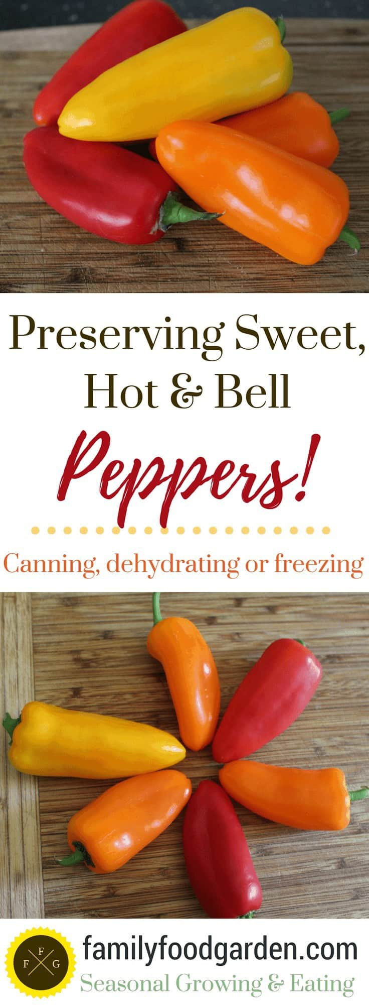 How to preserve peppers with canning, freezing or dehydrating