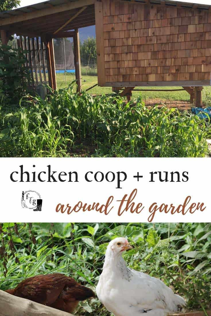 chicken coop runs around the garden