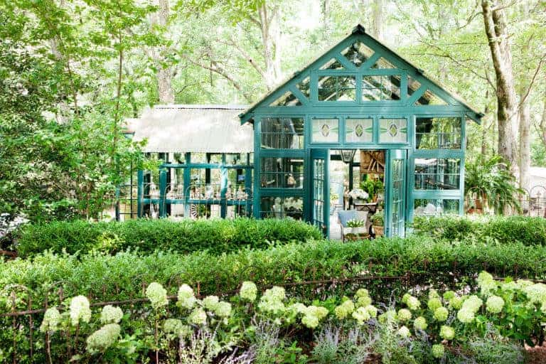 Garden Design ideas for she shed
