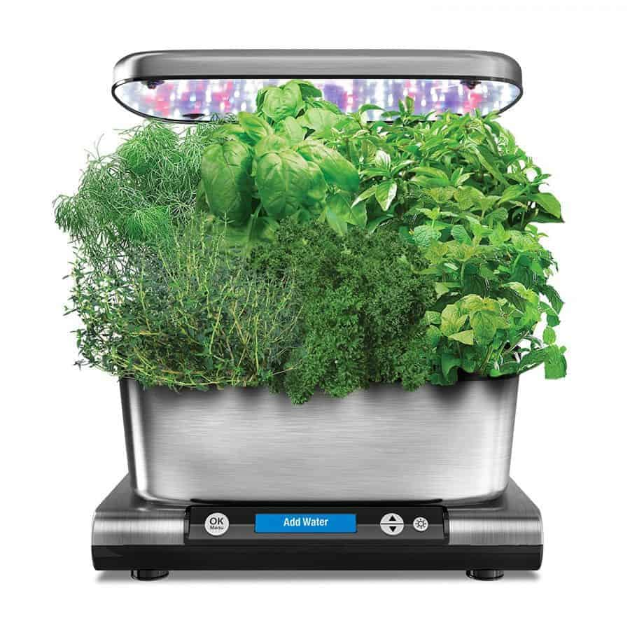 Herb Kits For Indoors: Indoor Herb Garden Kits For Fresh Kitchen Herbs