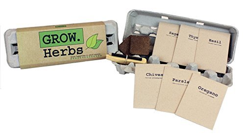 Herb Garden Kits for Kids