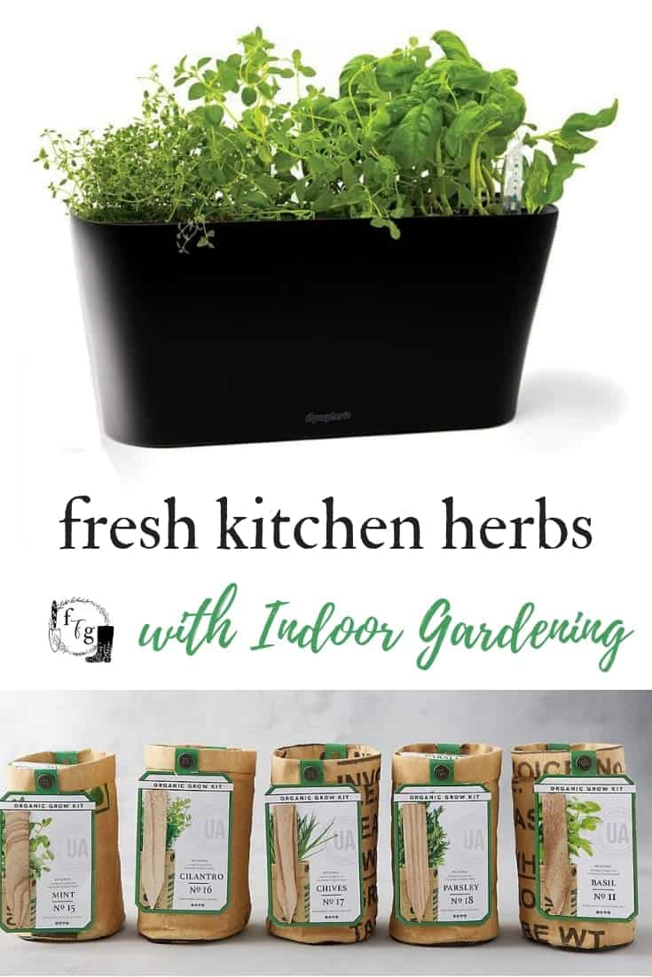 Herb Kits for Indoor Gardening