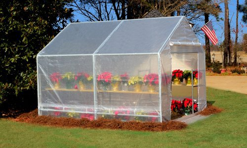 Greenhouse Kits: Mini, Small, DIY Greenhouses