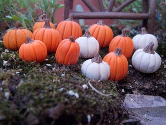 Halloween Pumpkin Fairy Gardens ~ Kits, Ideas & Supplies