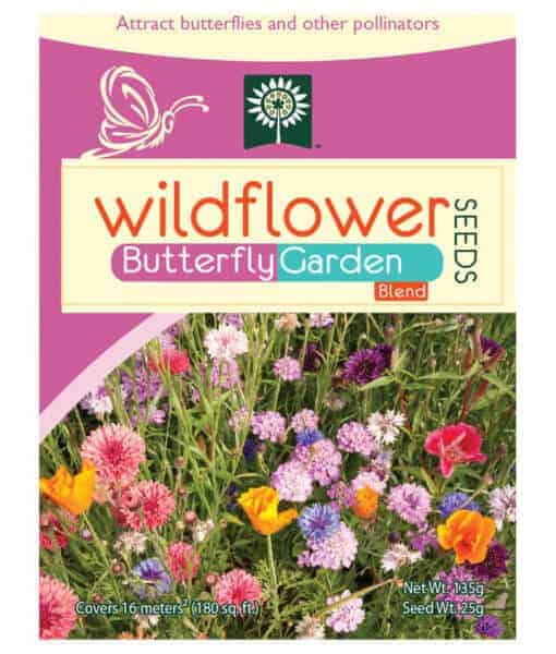 Butterfly wildflower mix