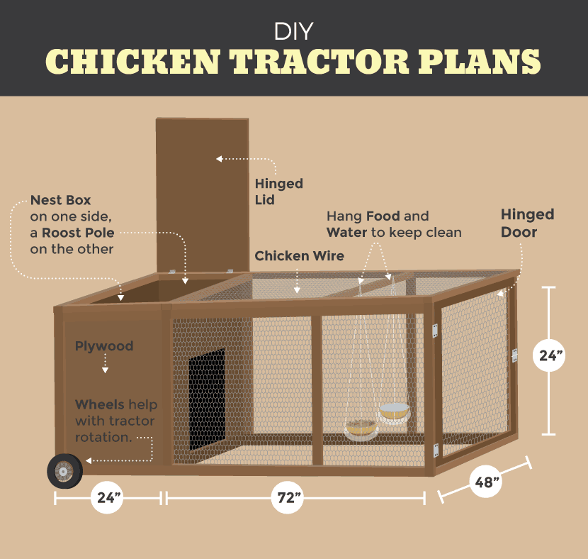 Will chicken tractors work for your homestead family for Mobile chicken coop plans