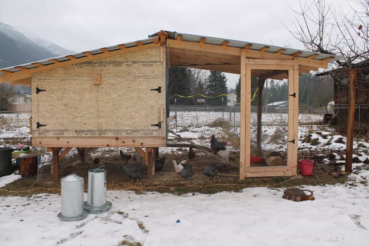 Winter chicken coop design