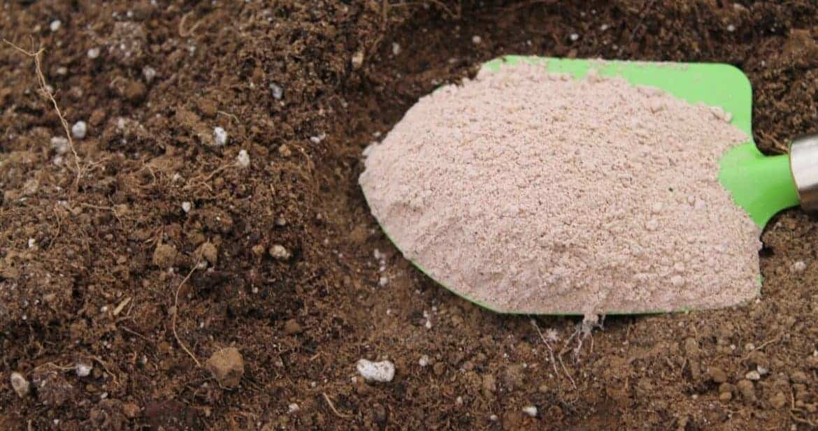 Azomite trace minerals for better garden soil family food for Soil mineral content