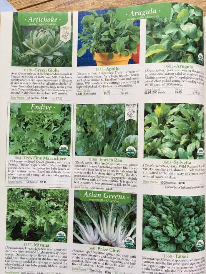 How to order from seed catalogs