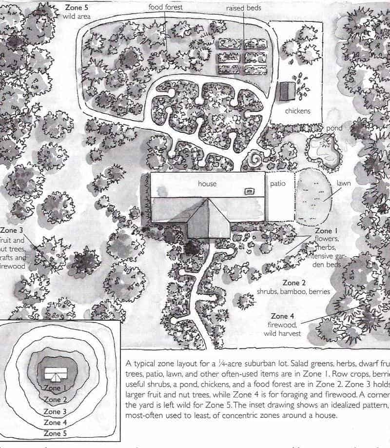 Backyard Permaculture Design & Tips | Family Food Garden on Backyard Permaculture Design id=78599