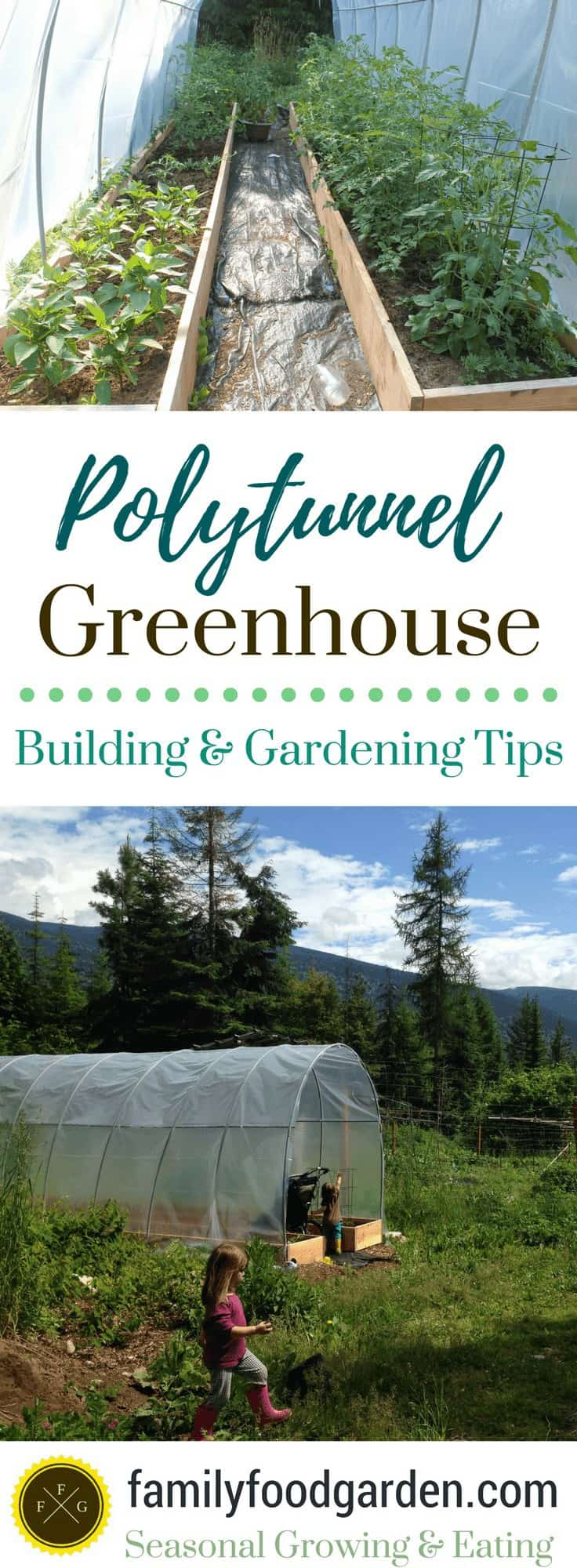 Gardening with a polytunnel greenhouse