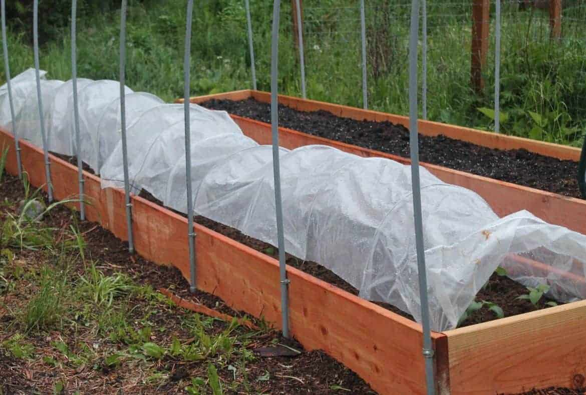 Hoophouse Choices for the Backyard Greenhouse