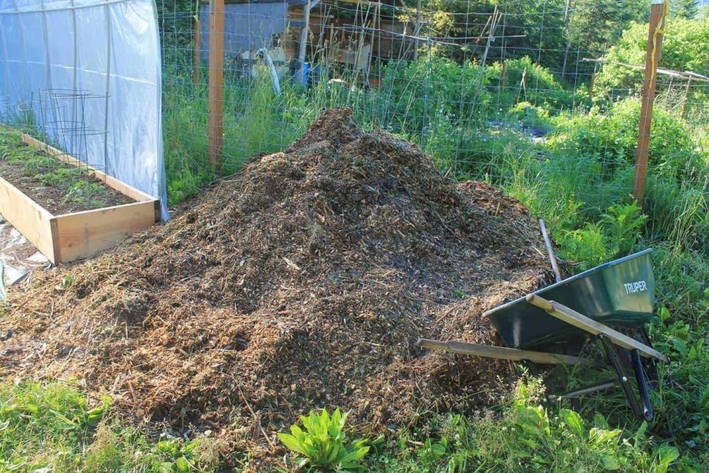 What is the best garden mulch for your garden needs? Review of straw, hay & woodchips
