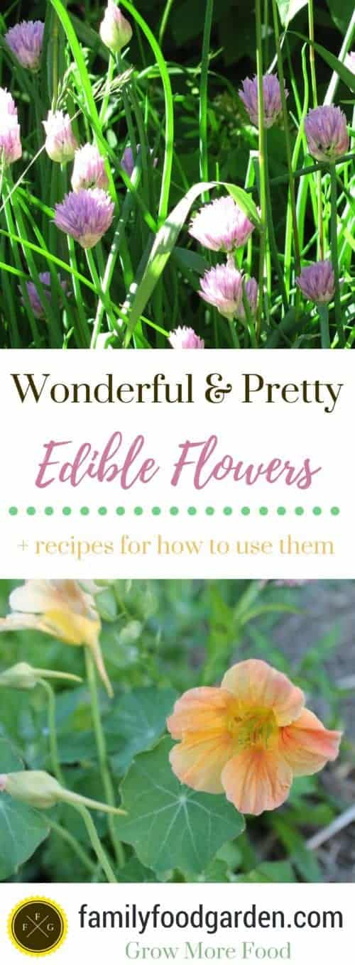 Edible flowers + ways to use them
