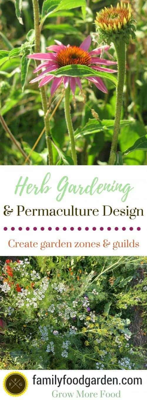 Permaculture Herb Gardening Design