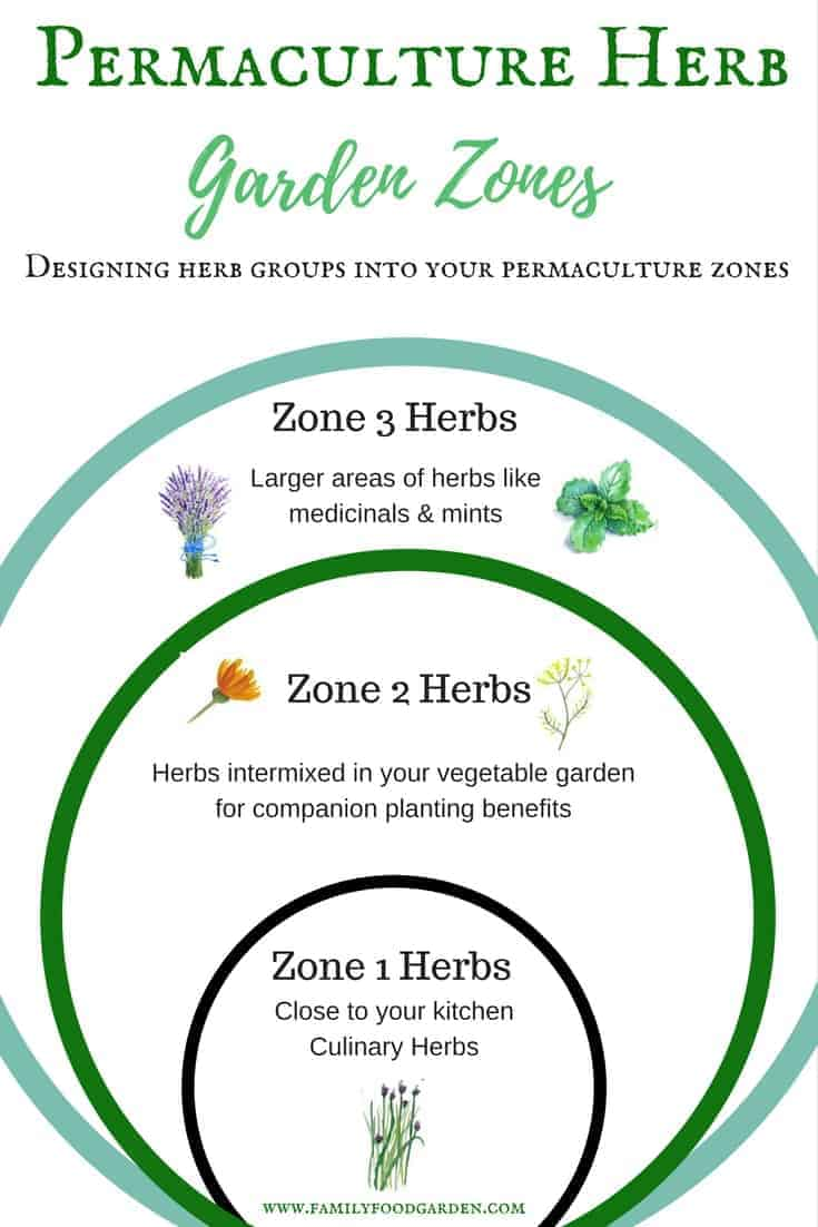 Herb Gardening Design in Permaculture Zones | Family Food ...