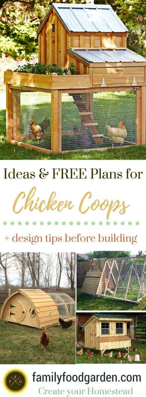 Fantastic Chicken Coops- plans + design