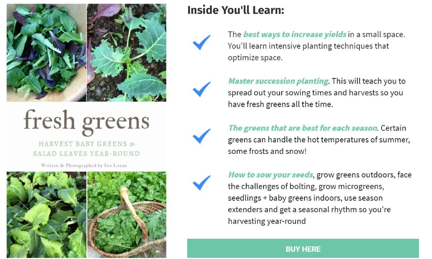 Fresh Greens book- Grow Greens & Salad Leaves Year-Round