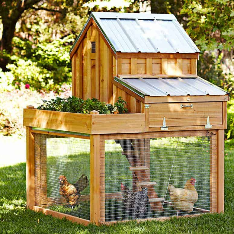Gorgeous cedar chicken coop with planter