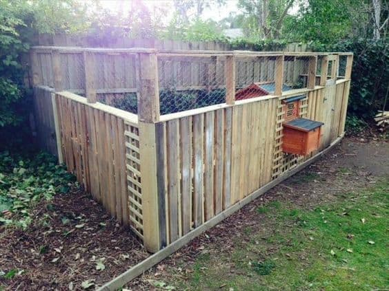 repurposed pallets chicken coop