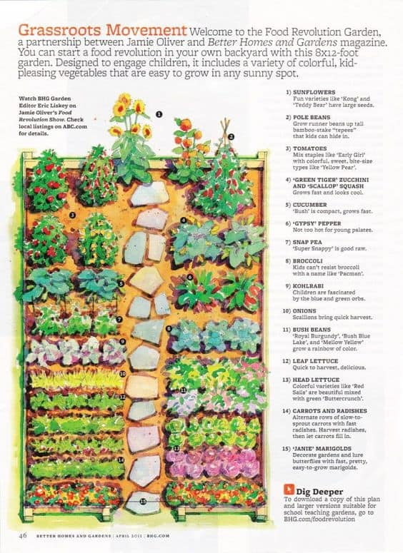 Kitchen Garden Designs Plans Layouts 2020 Family Food