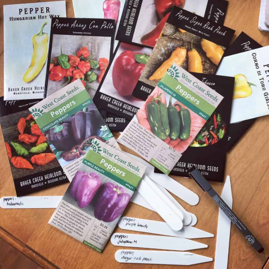 Choosing pepper varieties