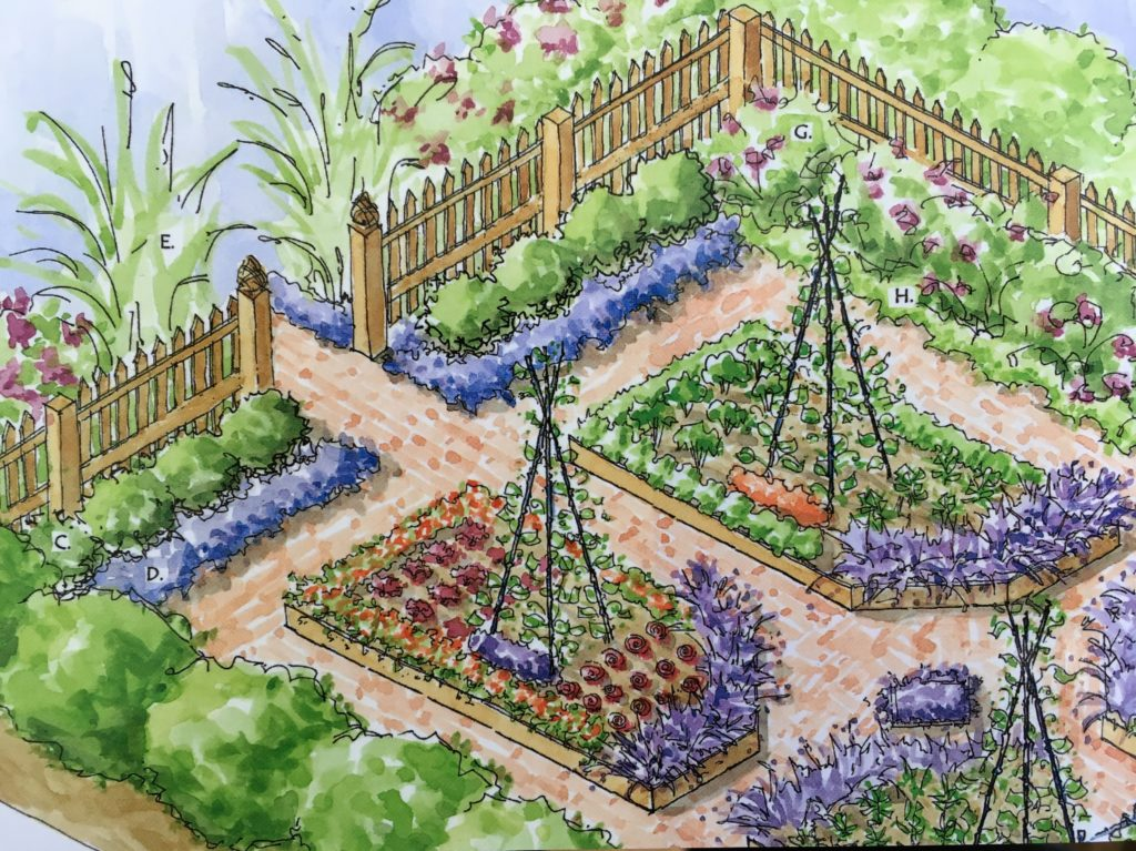 Magnificent Kitchen Garden Designs Plans Layouts Family Food Garden Home Interior And Landscaping Ologienasavecom