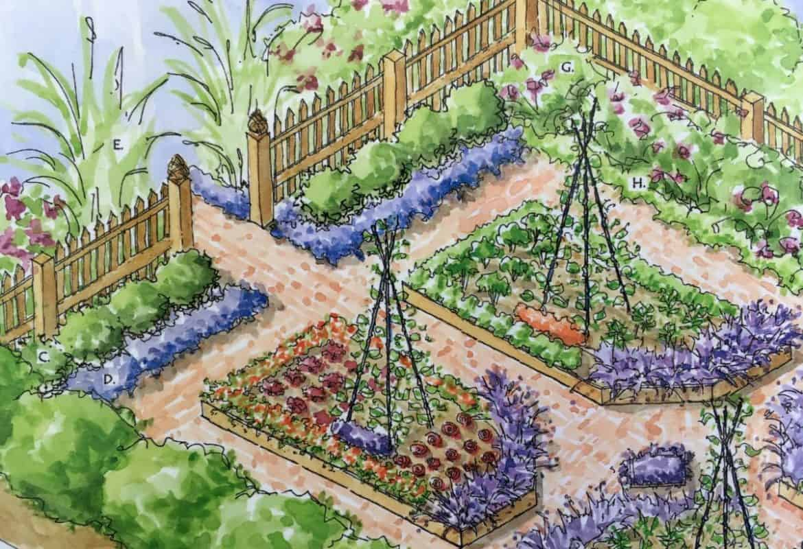 Potager Kitchen Garden Design Plans