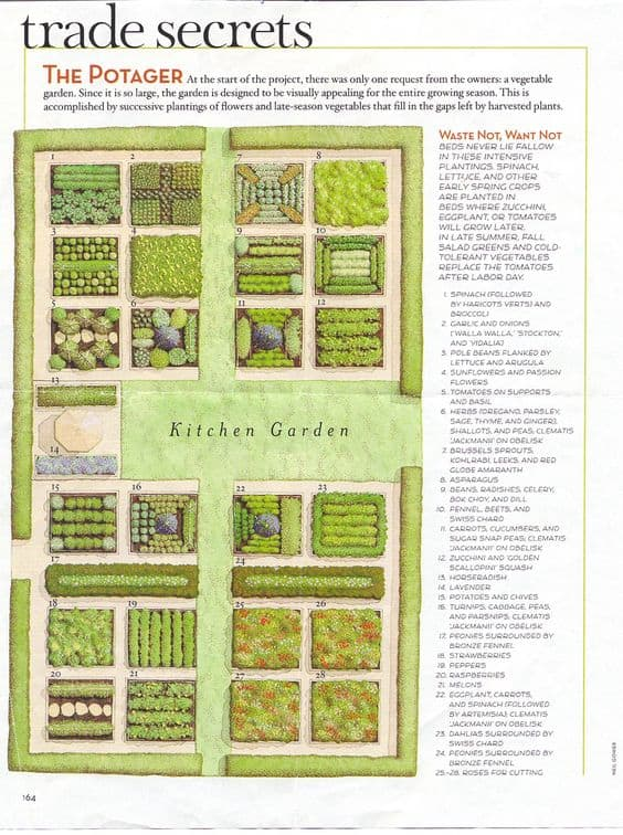 Small Backyard Vegetable Garden Ideas Veggies