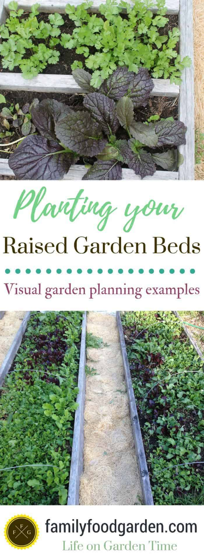Plants for raised garden beds