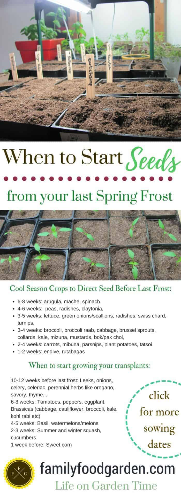 When to plant seeds indoors or outside.