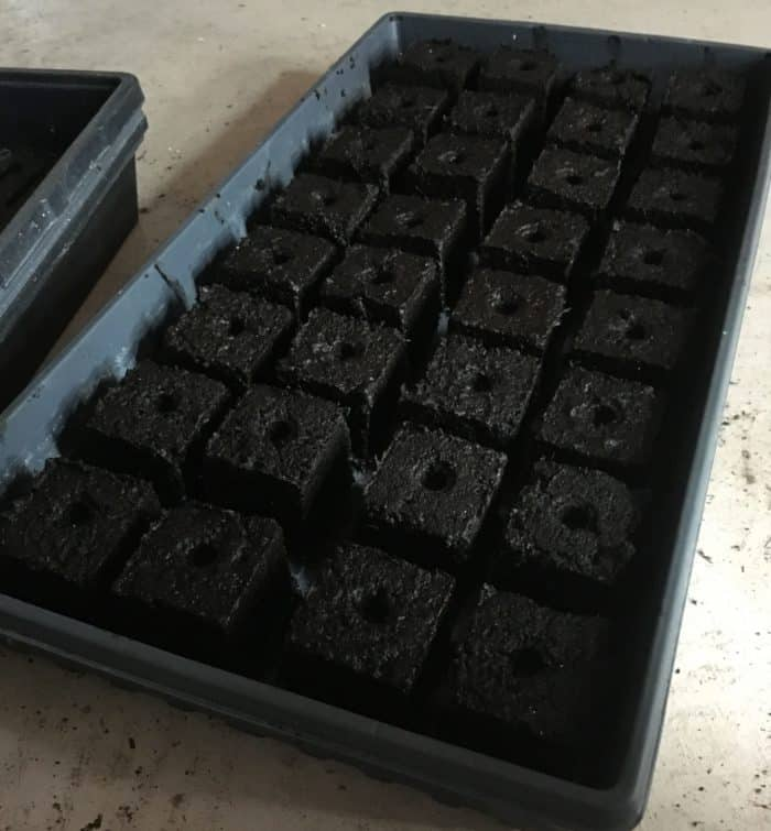 Soil block makers for seed starting are a great eco option