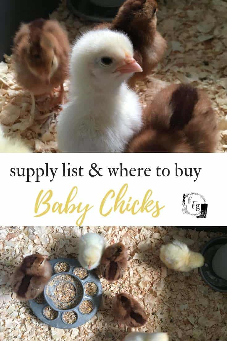 Supply list for baby chicks