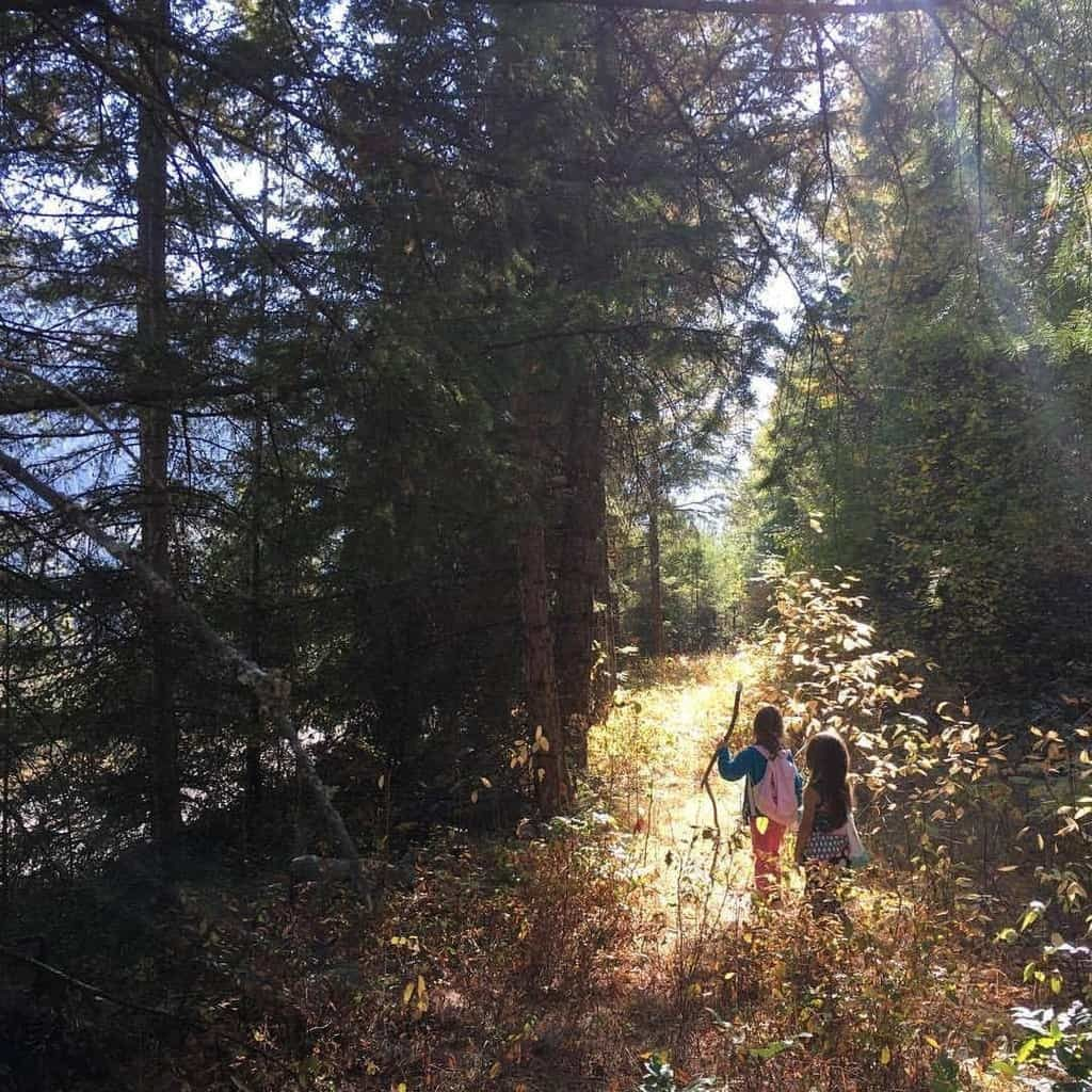Outdoor nature learning with kids