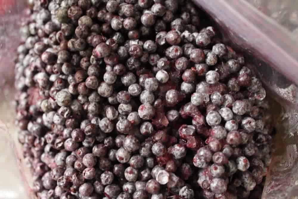 Freezing elderberries for later use